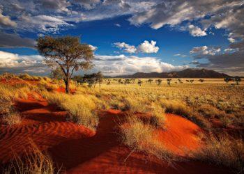 Namibia, La Perla d'Africa:  03-15 ottobre 2017
